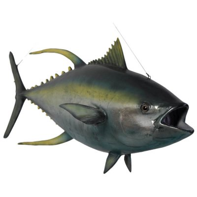 Tonfisk Trofé 60x164