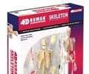 4d Skelett Byggsats