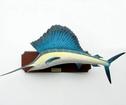 Trofé Svärdfisk