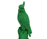 Kakadua Grön Sparbössa